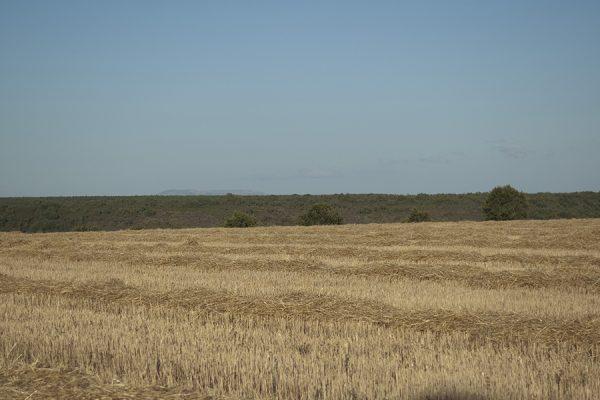 Coto de caza menor en Palencia | Cotos caza menor España | Coto de Caza Tabanera de Valdavia
